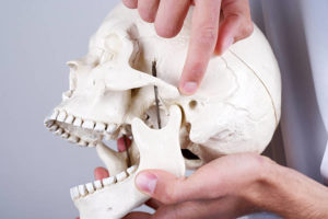 tmj specialist- jaw joints