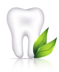 Reasons why choosing out of network-Holistic Dentistry